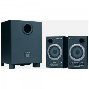 Roland DM-2100 Speakers